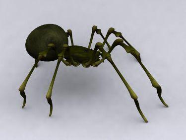 Green Spider Model 3d Model Download Free 3d Models Download